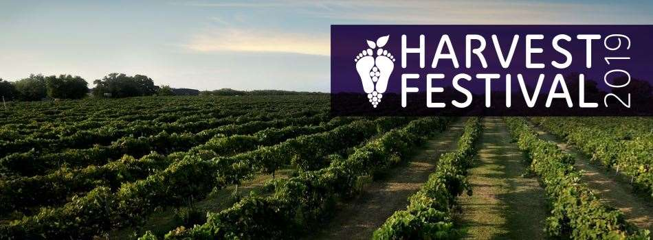 Purchase Tickets to Harvest Festival: Moonlit Harvest at Messina Hof Estate Winery and Resort on CellarPass