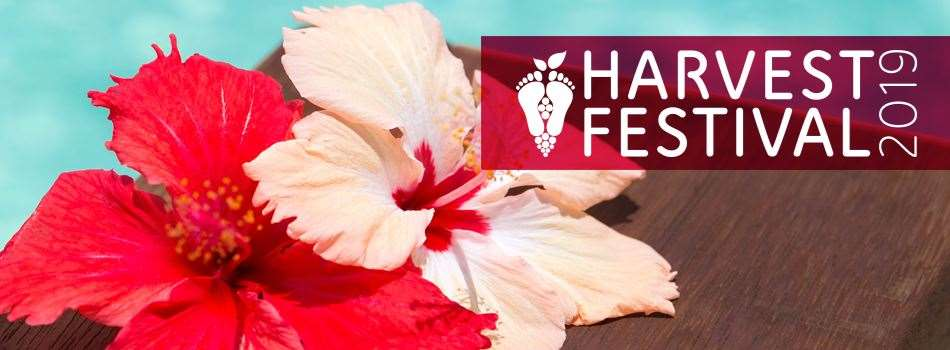 Purchase Tickets to Harvest Festival: Terror in Tahiti Murder Mystery Dinner at Messina Hof Estate Winery and Resort on CellarPass