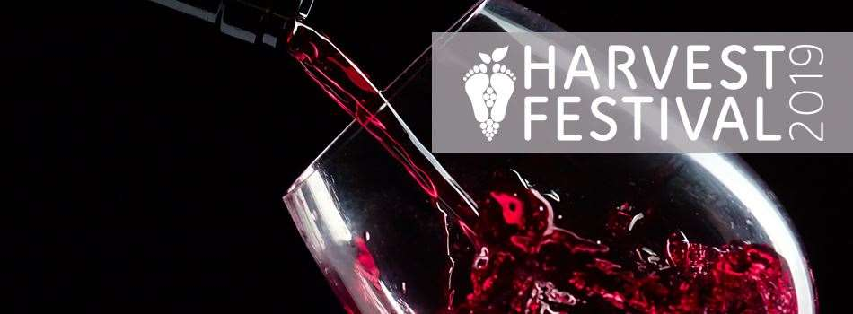 Purchase Tickets to Harvest Festival: Grand Finale Gala at Messina Hof Estate Winery and Resort on CellarPass