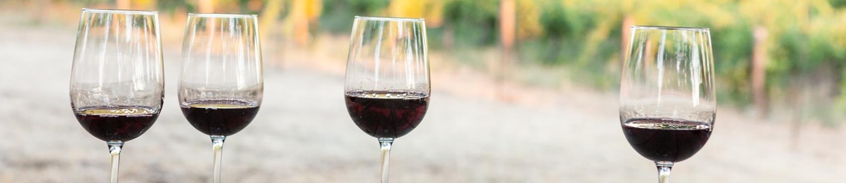 Purchase Tickets to Winemaker Vineyard Tour & Barrel Tasting at Shadow Ranch Vineyard on CellarPass