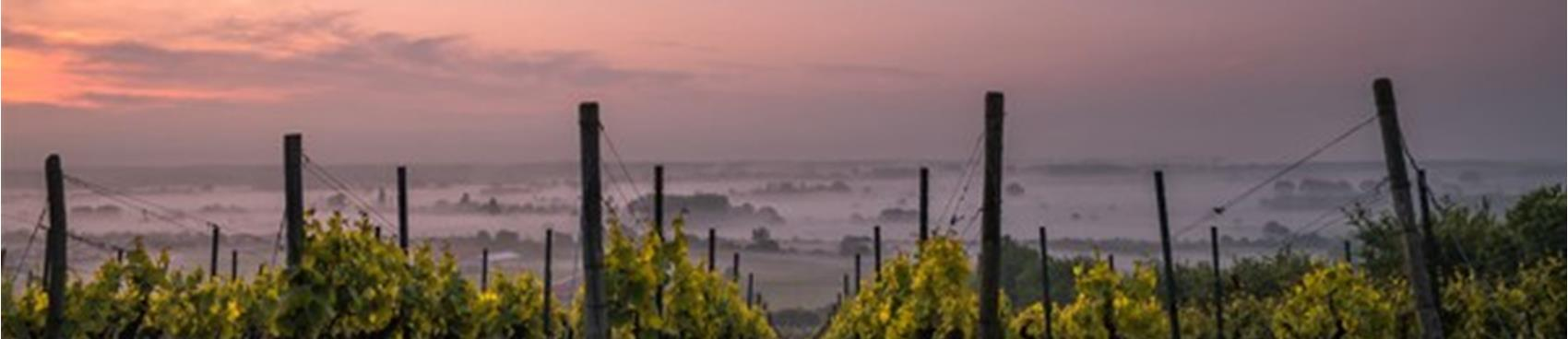 Purchase Tickets to Comedian Maureen Langan at The Laugh Cellar on CellarPass