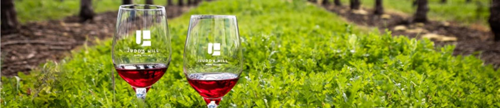 Valentines in March Party at Judd's Hill Winery