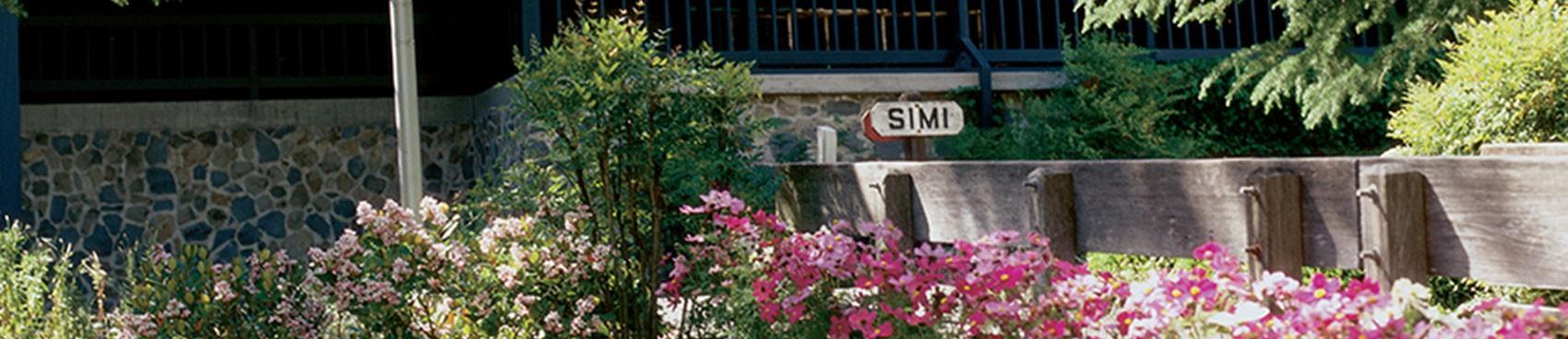 Making Sauerkraut - pairing with Simi Russian River Pinot Gris