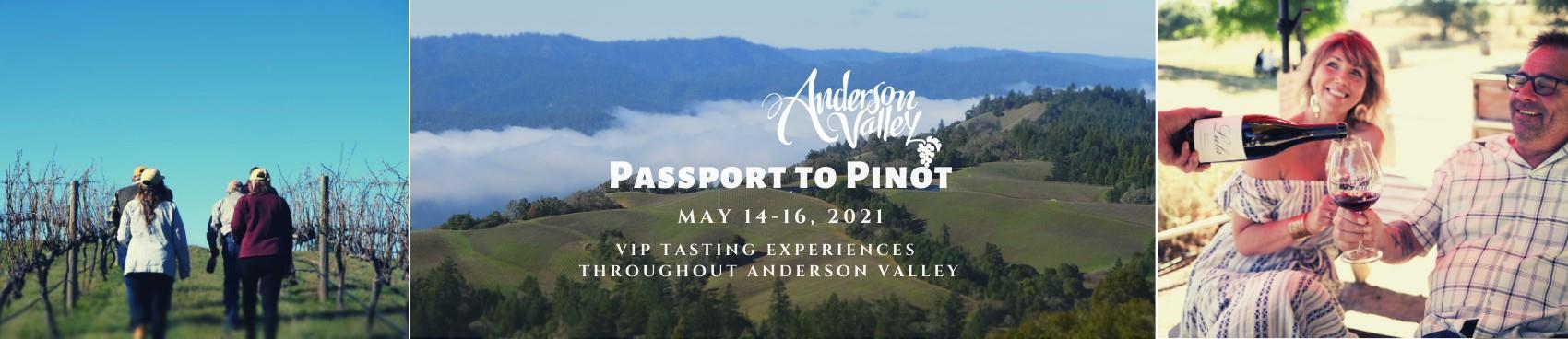 Anderson Valley Passport to Pinot