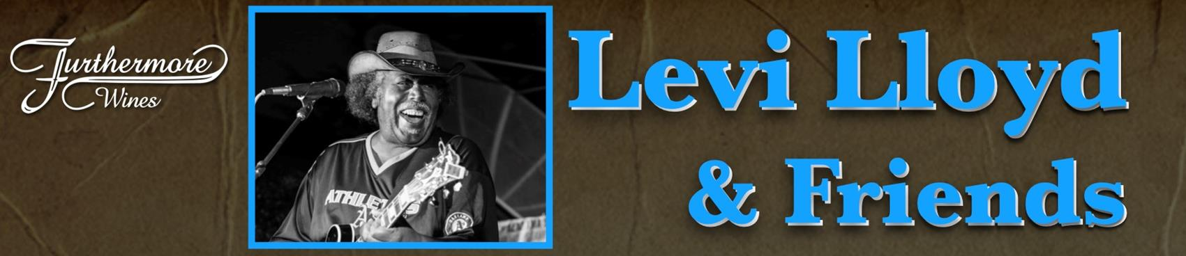 Blues in the Vines : Levi Lloyd & Friends