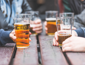 Beer Festival Guest & Festival Management.